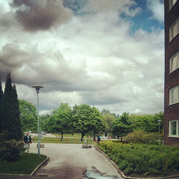 #moln