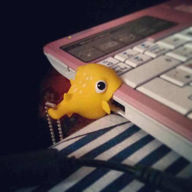 #nomnomnom #USB #fish