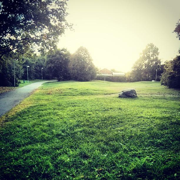Föredetta lilla lekparken på Hammarby. Nån slags solnedgång på eftermiddagen. .