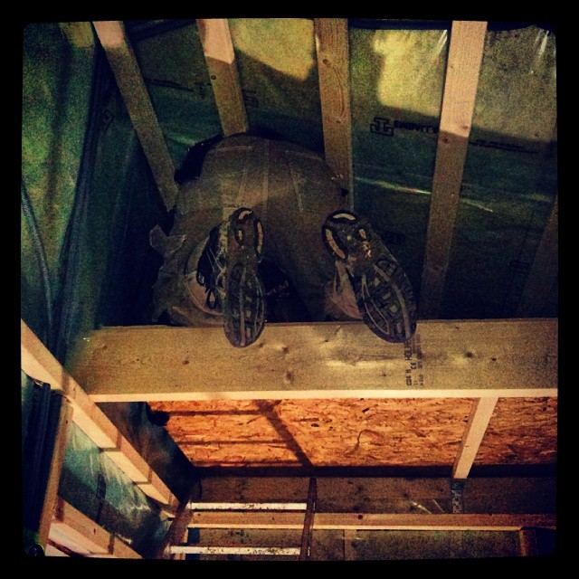 Röven på tomten på loftet.
