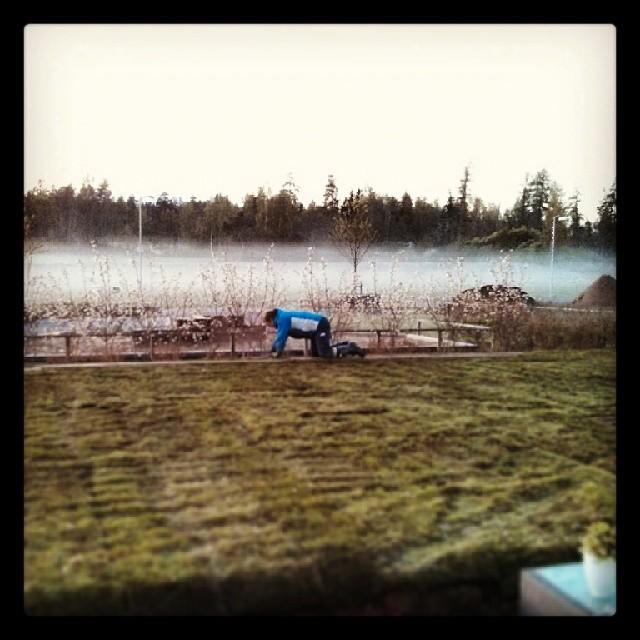 Skräckboktitel: Gräsläggare i skymning och dimma.