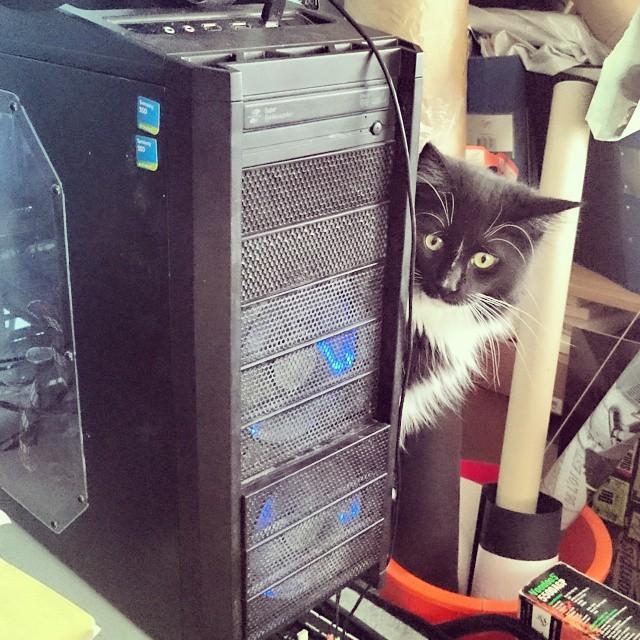 I'm protecting yo computah, yo!